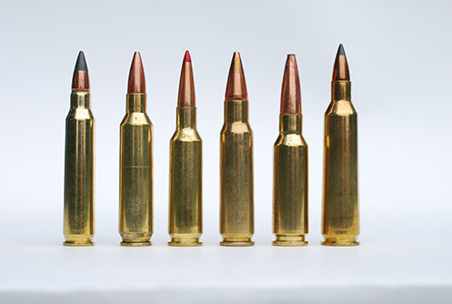 A Line Up of High Precision Rounds including the .224 Valkyrie